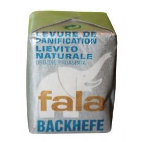 LEVURE DE BIERE FAVA 42GR...